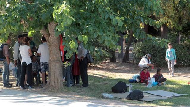 Οι μετανάστες μεταφέρονται στο... γήπεδο του Παναθηναϊκού!