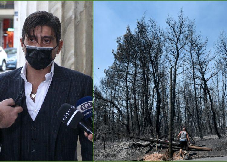 Γιαννακόπουλος: «Η χοντρή κομπίνα είναι στην αναδάσωση - Όχι στα υβριδικά!»