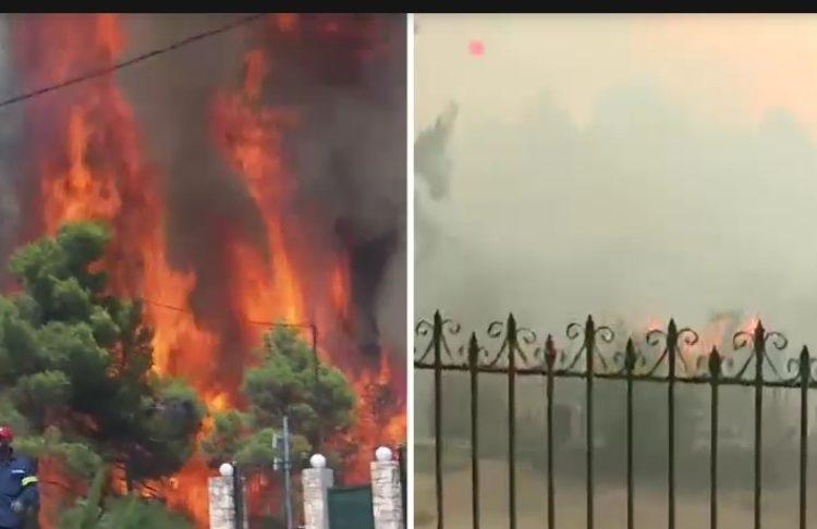 Η αντίδραση του Χεζόνια για τις πυρκαγιές στην Ελλάδα