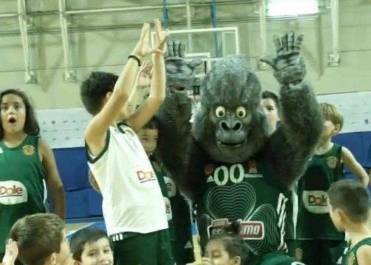 Έκπληξη με Green Kong στις ακαδημίες του «Εξάστερου»!